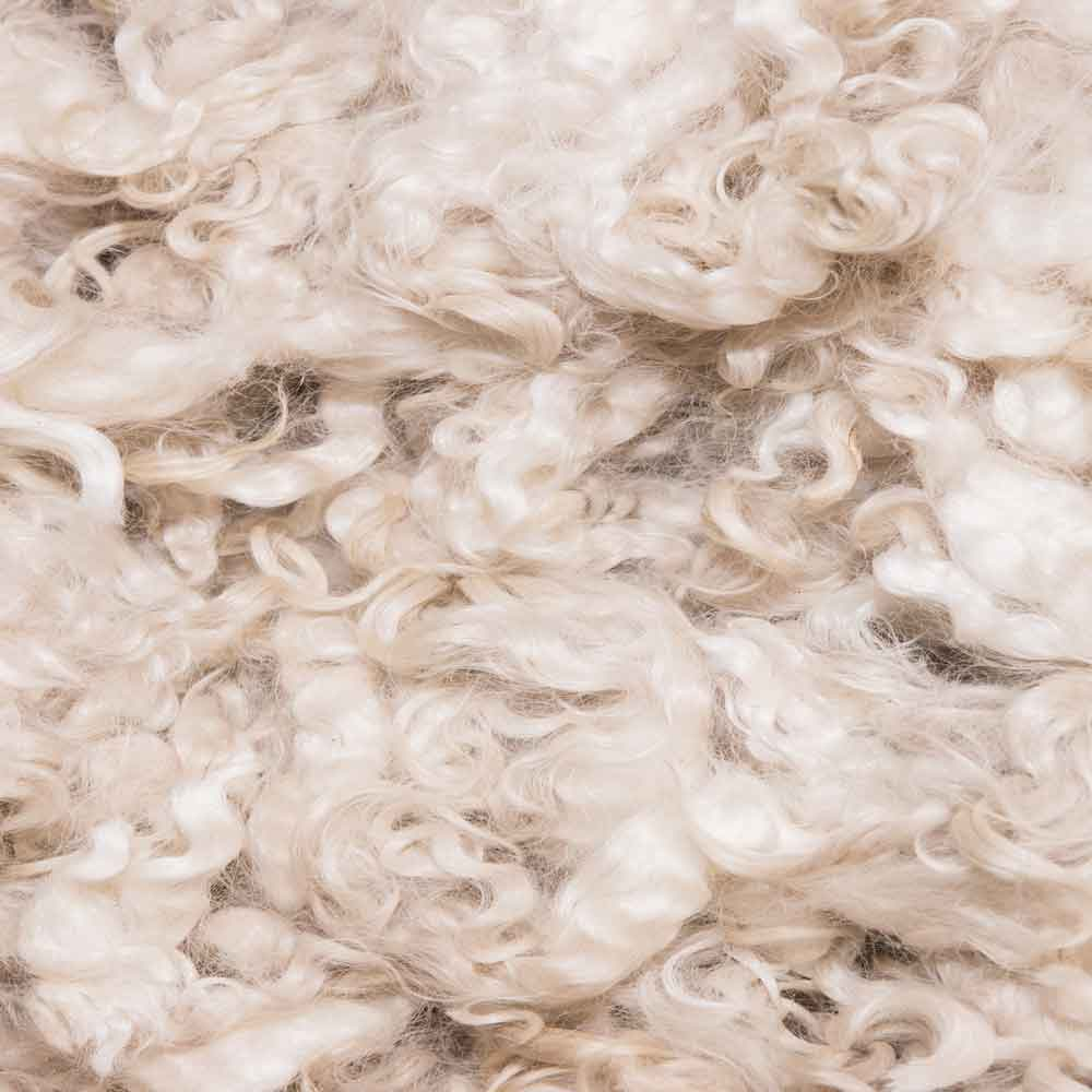 Sustainability Matetials Wool good fashion guide ECOLOOKBOOK